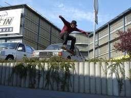 Jerry - Ollie over bush