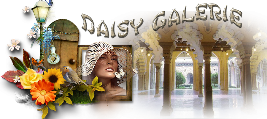 daisy galerie.png