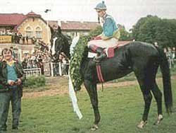 Regulus po Derby 1995